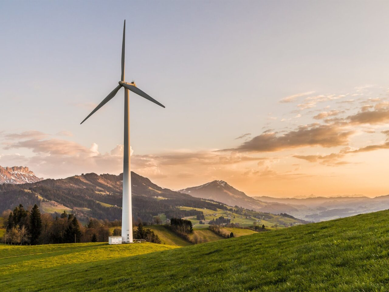 How Can The Business Community Help Improve The Environment?